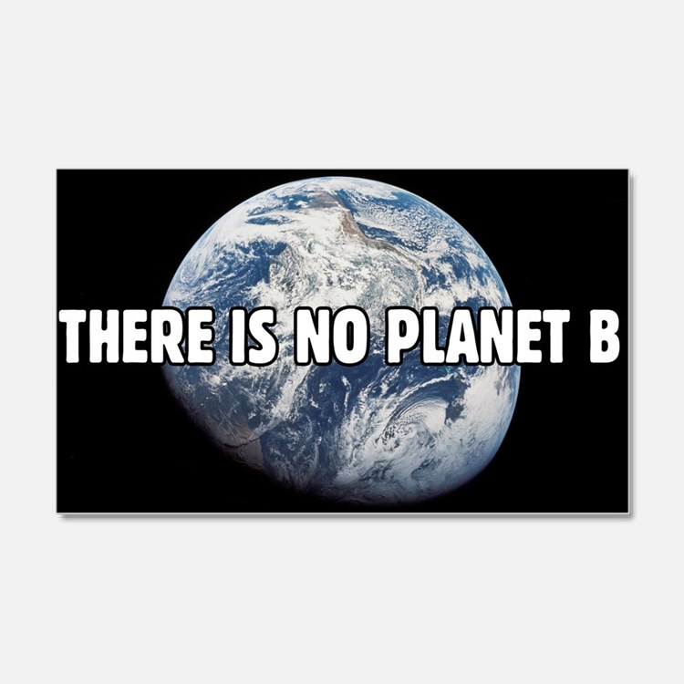There is no Planet B Wall Decal Sticker