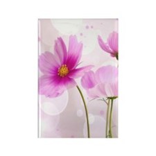 Pink Cosmos Flower Magnets