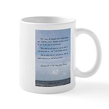 Jeremiah 29 Promise Mugs