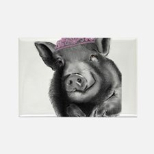 Princess lucy the wonder pig Magnets