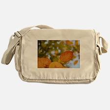 autumn Messenger Bag