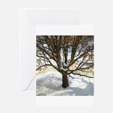 Winter Tree Greeting Cards