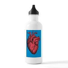 Unique Anatomical heart Water Bottle