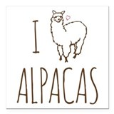 Alpaca Car Magnets