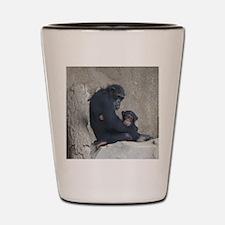Chimpanzee Baby and Mummy Shot Glass