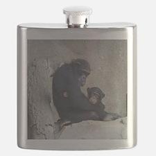 Chimpanzee Baby and Mummy Flask