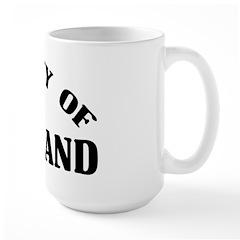 Property Of Swaziland Large Mug