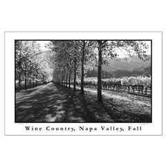 wine country napa valley black + white lg posters