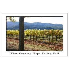 Wine country, Napa Valley, Fall large posters