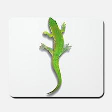 gecko1.png Mousepad