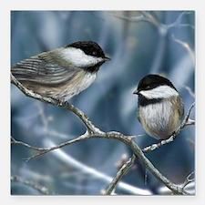 "chickadee song bird Square Car Magnet 3"" x 3"""
