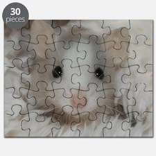 Cute Rodent Puzzle