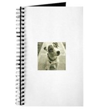 Jack Russell Journal