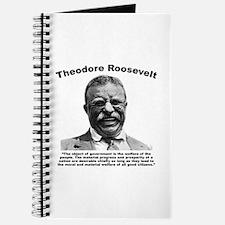 TRoosevelt: Welfare Journal
