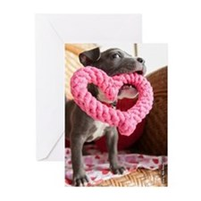 Gotcha Valentine Greeting Cards (pk Of 10)