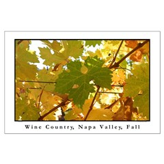 turning leaf, napa valley fall large posters