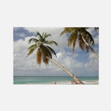 Martinique Rectangle Magnet
