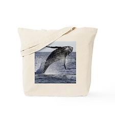 Humpback Breaches Tote Bag