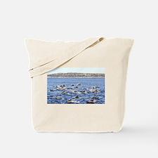La Jolla Dolphins Tote Bag