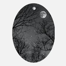 Moonlite Night Ornament (Oval)