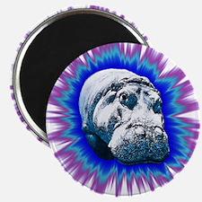 Hippo Pop Magnets