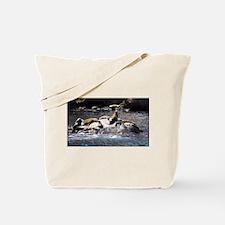 Sea Lion Party Tote Bag