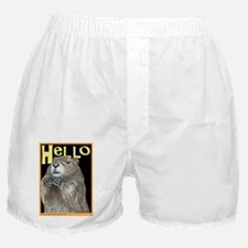 groundhog coming up Boxer Shorts