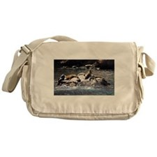 Sea Lion Party Messenger Bag