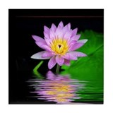 Lilac and water lily items Drink Coasters