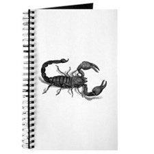 African Scorpion Journal