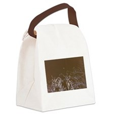 Cute Flint Canvas Lunch Bag
