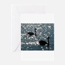 black swan Greeting Cards