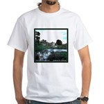 Ireland -- Desmond Castle T-shirt