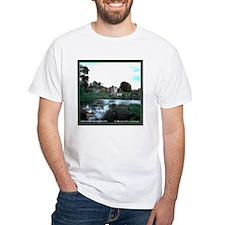 Ireland -- Desmond Castle T-shirt