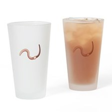 Earth Worm Drinking Glass