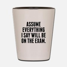 Everything I Say Will Be On The Exam Shot Glass