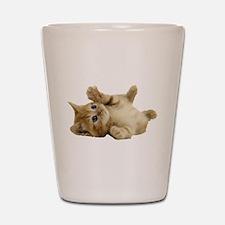 Tickle Me Kitten Shot Glass