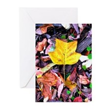 Cute Yellow tulips Greeting Cards (Pk of 10)