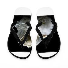 bridal bear Flip Flops