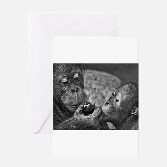 orangutans-sharing-an-apple Greeting Cards