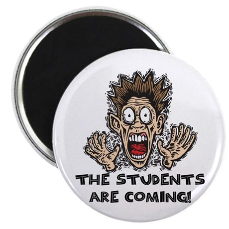 Funny Teacher Gifts Magnet