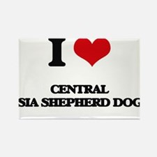 I love Central Asia Shepherd Dogs Magnets