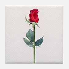 long stemmed red rose Tile Coaster