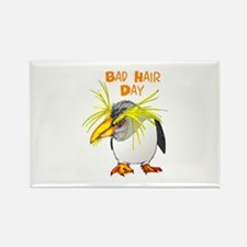 BAD HAIR DAY Magnets