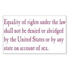 Equal Rights Amendment Decal