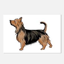 australian terrier Postcards (Package of 8)