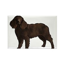 american water spaniel Magnets