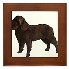 american water spaniel Framed Tile