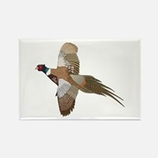PHEASANT Magnets