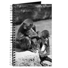 Spider Monkey with Young Journal